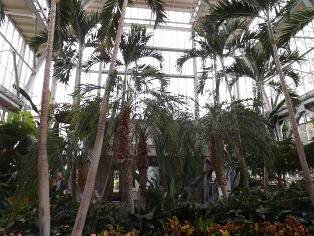 Inside The Jewel Box